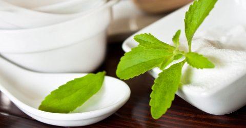 fiteback-stevia-leaf